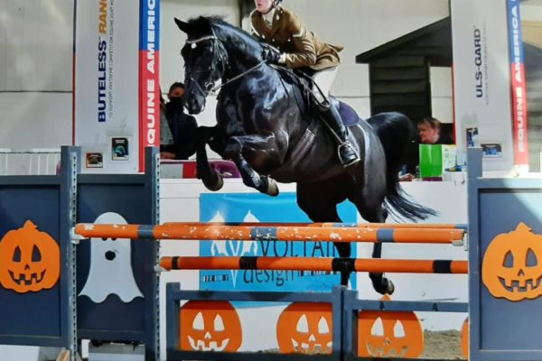 Equitation halloween event_1